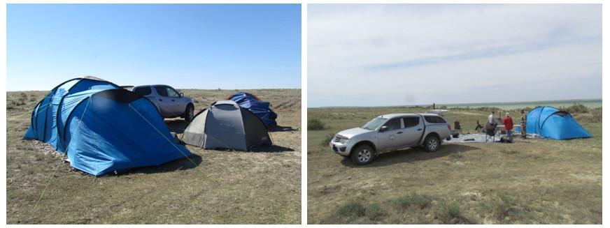 Палаточный лагерь экспедиционный группы на время полевых исследований