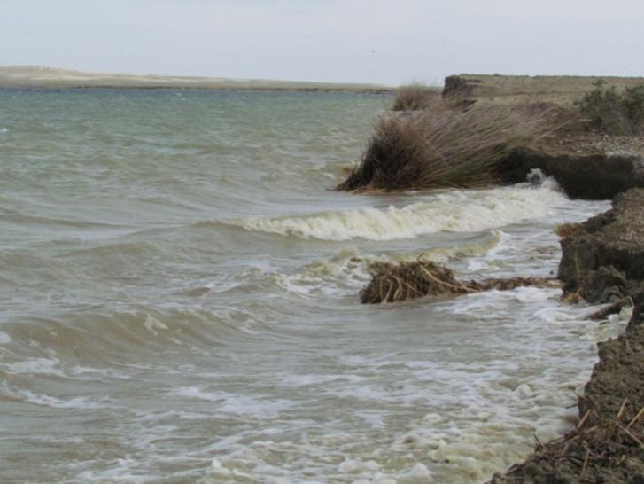 Волнения на озере Камыстыбас: высота волны 0,5 см.