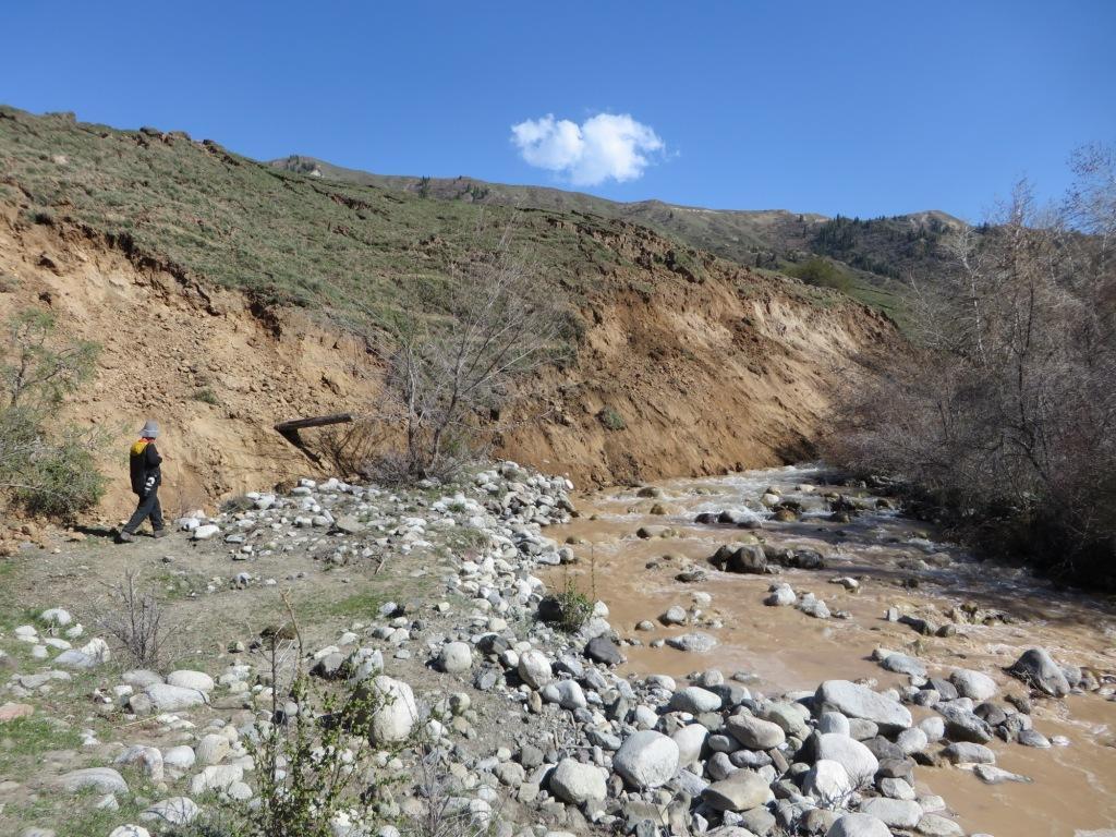 Передний фронт оползня , заваливающий русло р. Колсай
