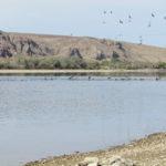 Полевые исследования  по подпрограмме: «Создание геопортала «Устойчивое водно-ресурсное обеспечение населения и экономики в трансграничных бассейнах рек Иле и Ертис».