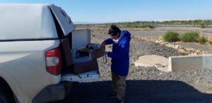 Анализ первого дня на реке Шарын